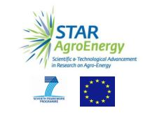 Bridging research innovation with regional development:  the Star Agroenergy Experience