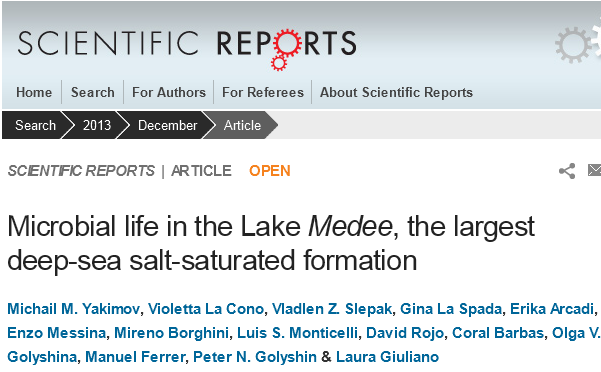 Microbial life in the Lake Medee, the largest deep-sea salt-saturated formation