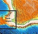 Perth Canyon - Australia: first deep exploration